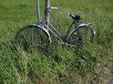 Lužní jízdní kolo zaparkované u pravobřežní hráze Labe nedaleko osady Zwischendeich nad městem Wittenberge tu je podle všech indicií delší dobu.