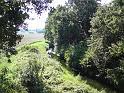 Kraj luhu u Kelských Větrušic při pravém břehu Labe.