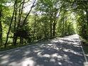Opatovický kanál se místy velice přibližuje k silnici II/333 z Bohdanče na Přelouč.