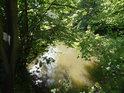 Ano, také Opatovický kanál v Břehách je rybářským revírem, je součástí revíru Labe 27.