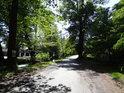 Cesta po pravém břehu Opatovického kanálu z Bohdanče směrem na Neratov.