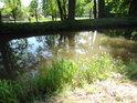 Sluneční flek na pravém břehu Opatovického kanálu nedaleko sádek v Bohdanči.