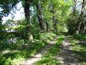 Cesta po levém břehu Opatovického kanálu ve Starých Ždánicích oproti vyschlému rybníku nad silničním mostem.