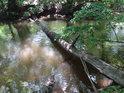 Přirozená lávka přes Opatovický kanál oproti místu zvaném Tři prdy u Starých Ždánic.
