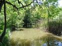 Opatovický kanál se již ubírá k Bohdanči, aby tam napájel podnes zachovalou soustavu rybníků, vybudovaných v požehnané době vlády rodu Pernštejnů v této oblasti.