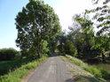 Zpevněná cesta po vrcholu pravobřežní hráze Opatovického kanálu nad Opatovicemi n/L.