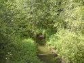 Sopřečský potok je na rozdíl od Opatovického kanálu přirozeným vodním tokem.