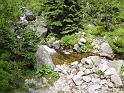 Na březích Labe vysoko v horách rostou smrky, kapradí, borůvčí, lopuchy i šťovíky a hlavně je tu spousta kamenů všech velikostí, které za rok nejspíše budou zas o kousek níž po proudu.