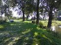 Labe mezi obcemi Černěves a Lounky je pro rybáře lákavé, kolem ramene řeky pak obzvlášť.