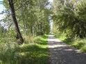 Cyklistická stezka mezi řekou Labe a slepým ramenem nad Litoměřicemi.